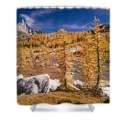 Prusik Peak Above Larch Grove Shower Curtain
