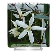Psalm Eighteen Two White Clematis Shower Curtain