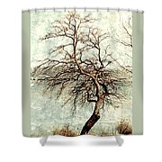 Psalms 24 V 1 Shower Curtain