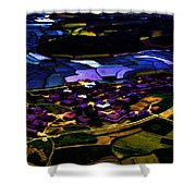 Psychadelic Aerial View Shower Curtain