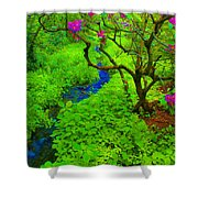 Psychedelic Adventure  Shower Curtain