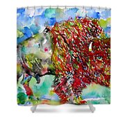 Psychedelic Buffalo Shower Curtain