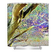 Psychedelic English Park Shower Curtain
