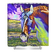 Psychedelic Horse Shower Curtain