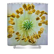 Psychedelic Poppy  Shower Curtain