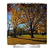 Public Garden Fall Tree Shower Curtain
