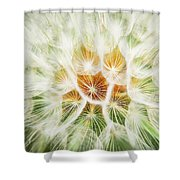 Puff Ball Glacier National Park Shower Curtain
