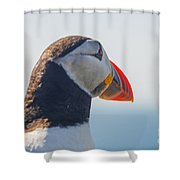 Puffin In Close Up Shower Curtain
