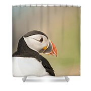 Puffin Profile Shower Curtain