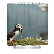 Puffin With Sandeels Shower Curtain