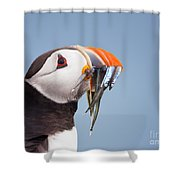 Puffin With Sandeels Portrait Shower Curtain