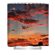 Puffy Pink Clouds Shower Curtain