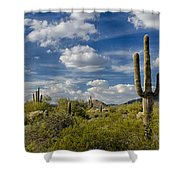 Puffy White Clouds  Shower Curtain