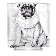 Pug Anton Shower Curtain