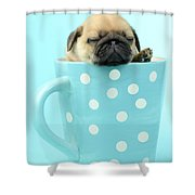 Pug In A Cup Shower Curtain by Greg Cuddiford