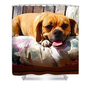 Puggle Lounging Shower Curtain