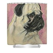 Pugnacious Shower Curtain