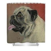 Pugster Shower Curtain