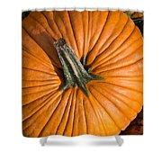 Pumpkin Aerial View Shower Curtain