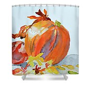 Pumpkin And Pomegranate Shower Curtain