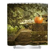 Pumpkin Shower Curtain by Amanda Elwell