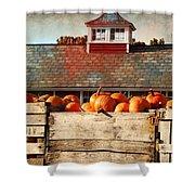 Pumpkin Crates Barn  Shower Curtain