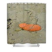 Pumpkin In The Sand Shower Curtain