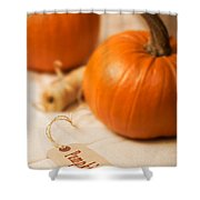 Pumpkin Label Shower Curtain