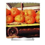 Pumpkin Load Shower Curtain