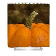 Pumpkin Macro 4 A Shower Curtain