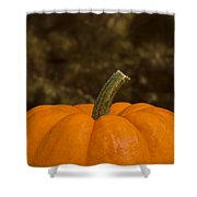 Pumpkin Macro 4 B Shower Curtain