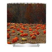 Pumpkin Season Shower Curtain