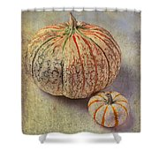 Pumpkin Textures Shower Curtain