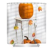 Pumpkins For Thanksgiving Shower Curtain