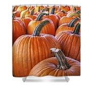 Pumpkins Galore - Autumn - Halloween Shower Curtain