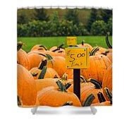 Pumpkins II Shower Curtain