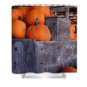 Pumpkins On The Wagon Shower Curtain