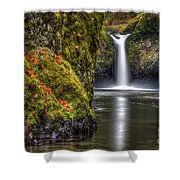 Punch Bowl Falls Shower Curtain
