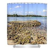 Punta Cana Beach Shower Curtain