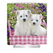 Puppies In A Pink Basket Shower Curtain