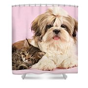 Puppy And Kitten Shower Curtain by Greg Cuddiford