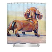 Puppy Butt Shower Curtain
