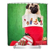 Puppy For Christmas Shower Curtain