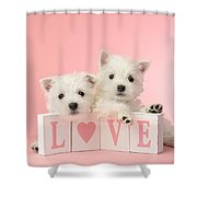 Puppy Love Shower Curtain by Greg Cuddiford
