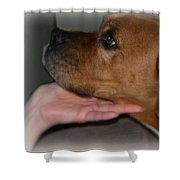 Puppy Loyalty Shower Curtain