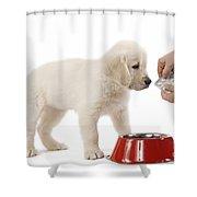 Puppy Receiving Medicine Shower Curtain