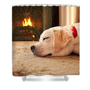 Puppy Sleeping By A Fireplace Shower Curtain
