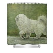 Puppy Struttin' Shower Curtain