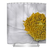 Pure And A Heart Of Gold Shower Curtain