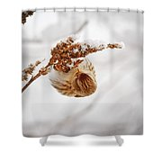 Pure Bliss Shower Curtain
